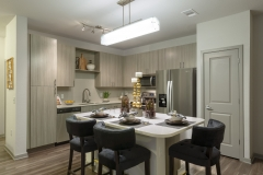 SunriseParc2bedrm-kitchen